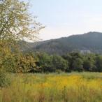 Das ehemalige Schickert-Gelände soll bald zur Ferienhaussiedlung werden
